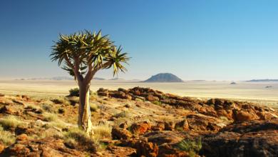 Mit dem Rad durch die Karoo-Halbwüste – sechs neue Touren