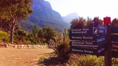 Südafrika: Wanderparadies mit über 1.000 Routen – Western Cape Tipps