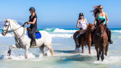 Urlaub in Südafrika: 8 Tipps für eine sportliche Rundreise