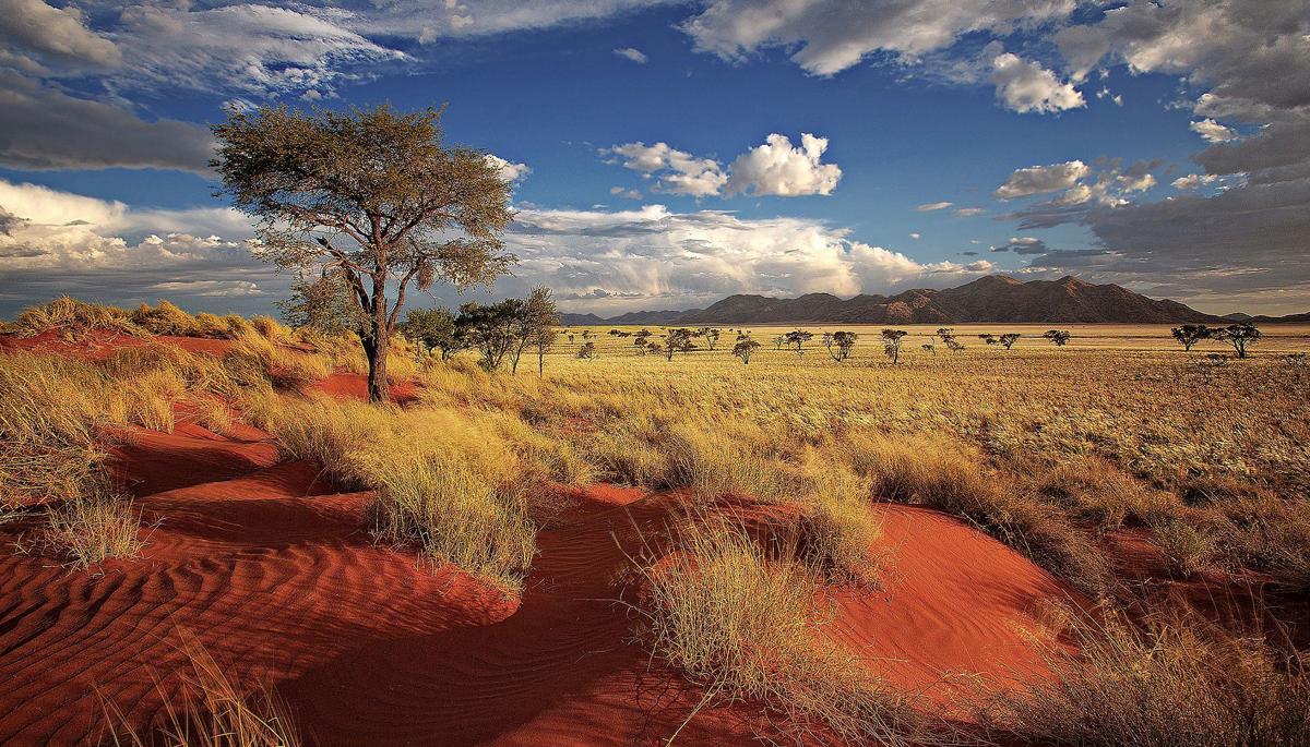 Namibias deutsche Minderheit in ARD-Film