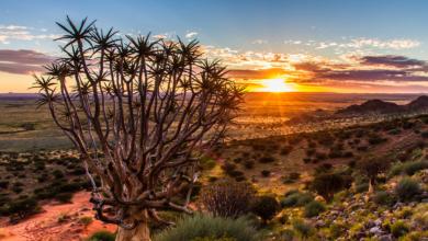 Urlaubsplanung 2016: Die besten Reiseziele für jeden Monat