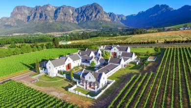 Wein, Wein und noch mehr Wein – 13 traumhafte Weingüter um Kapstadt