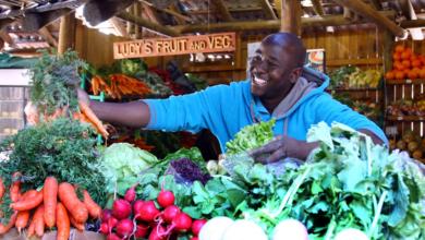 Johannesburg Geheimtipp: Bryanston Organic Market