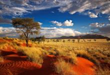 Lesertext: Sehnsuchtsland Namibia