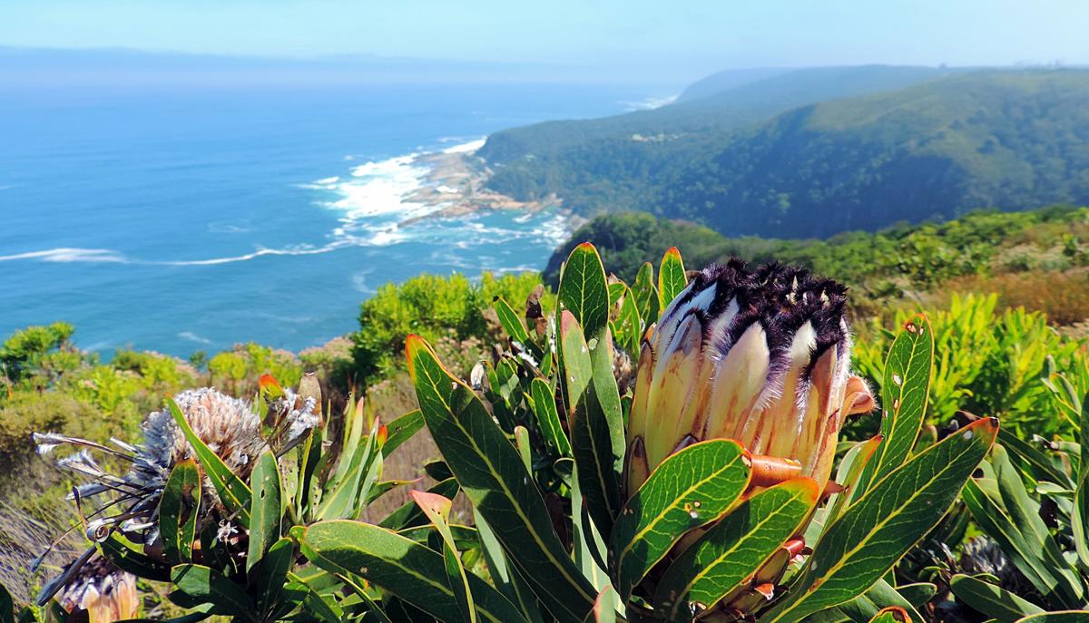 Südafrika – einfach unvergesslich